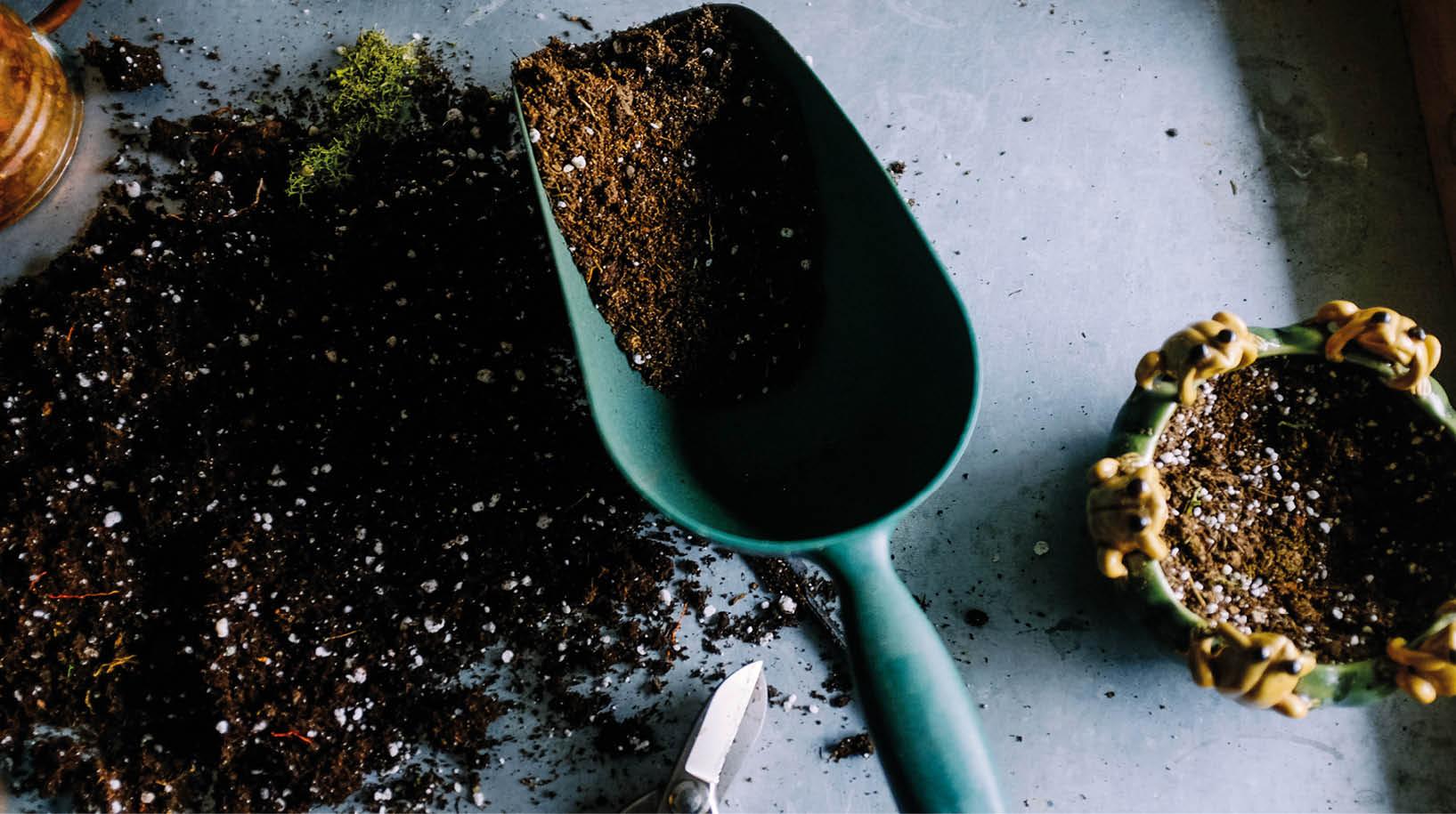 4 conseils myshopi pour pr parer votre jardin au printemps myshopi blog for Conseil pour le jardin